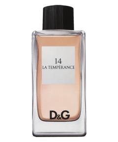 D&G - 14 La Tempérance