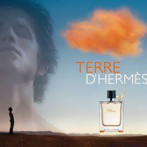 Terre d'Hermès le Parfum