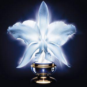 La Gamme Orchidée Impériale Guerlain