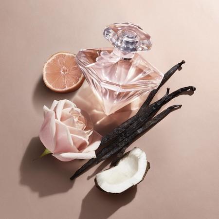 La Nuit Trésor Nude, le parfum présenté dans une nouvelle publicité avec Pénélope Cruz